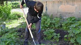 Работодатели Коркино помогают временно трудоустраивать подростков
