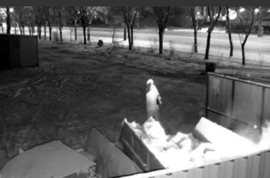 Спалила и перекрестила: женщина подожгла мусорный контейнер в Челябинске
